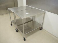 2 x Stainless mobiletrolley