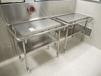 2 mobiletroley with 2 tray